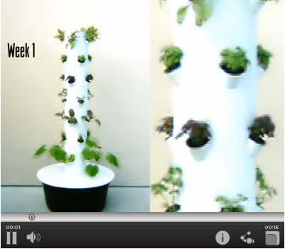 indoor tower garden. Watch How Fast It Grows! (click Above) Indoor Tower Garden A